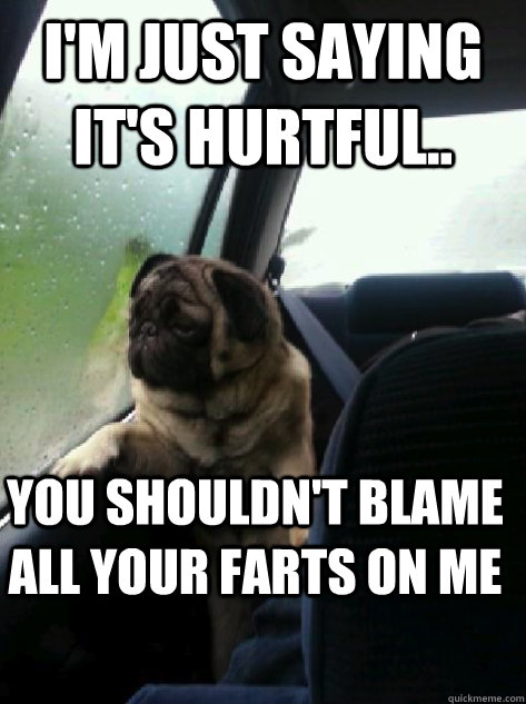 I'm just saying it's hurtful.. you shouldn't blame all your farts on me - I'm just saying it's hurtful.. you shouldn't blame all your farts on me  Introspective Pug