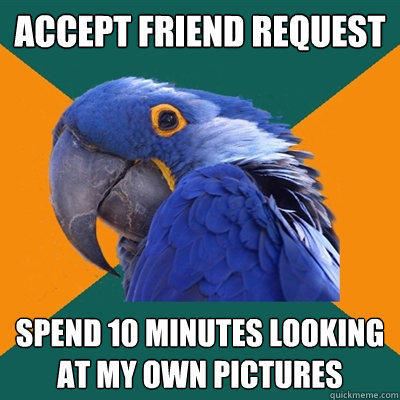 accept friend request spend 10 minutes looking at my own pictures - accept friend request spend 10 minutes looking at my own pictures  Paranoid Parrot