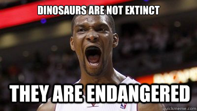 6adb3b29aee35e85ce30c0610050fb421de9d64fe1f4b0da125226ebceea4252 dinosaurs are not extinct they are endangered chris bosh disease