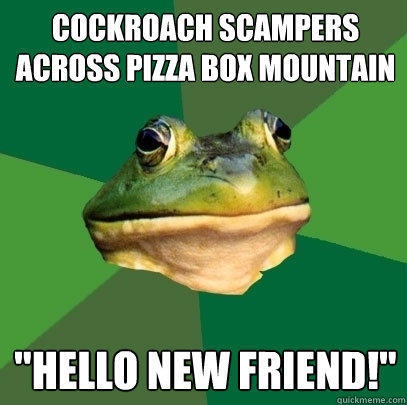 Cockroach scampers across pizza box mountain