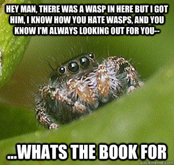 Hey man, there was a wasp in here but I got him, I know how you hate wasps, and you know I'm always looking out for you-- ...whats the book for  Misunderstood Spider