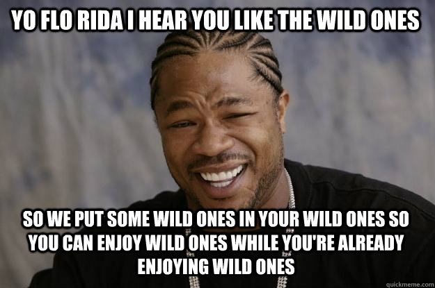 YO FLO RIDA I HEAR YOU LIKE THE WILD ONES SO WE PUT SOME WILD ONES IN YOUR WILD ONES SO YOU CAN ENJOY WILD ONES WHILE YOU'RE ALREADY ENJOYING WILD ONES - YO FLO RIDA I HEAR YOU LIKE THE WILD ONES SO WE PUT SOME WILD ONES IN YOUR WILD ONES SO YOU CAN ENJOY WILD ONES WHILE YOU'RE ALREADY ENJOYING WILD ONES  Xzibit meme