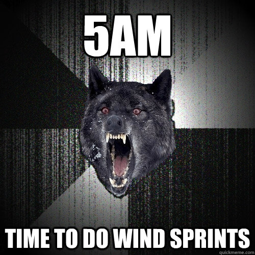 5am time to do wind sprints - 5am time to do wind sprints  Insanity Wolf