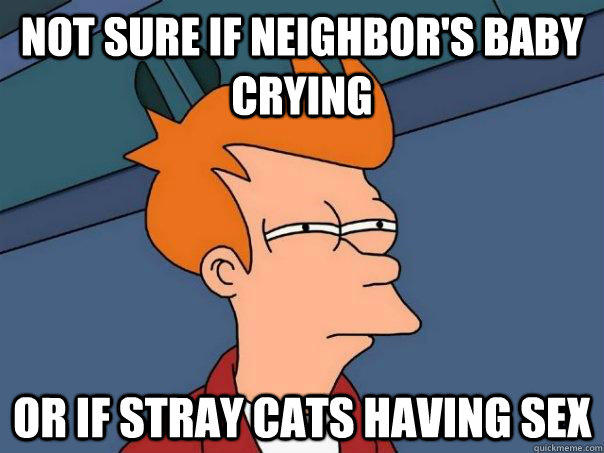 Not sure if neighbor's baby crying Or If stray cats having sex  - Not sure if neighbor's baby crying Or If stray cats having sex   Futurama Fry
