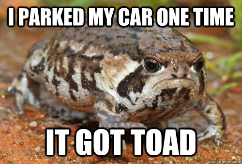 I PARKED MY CAR ONE TIME IT GOT TOAD