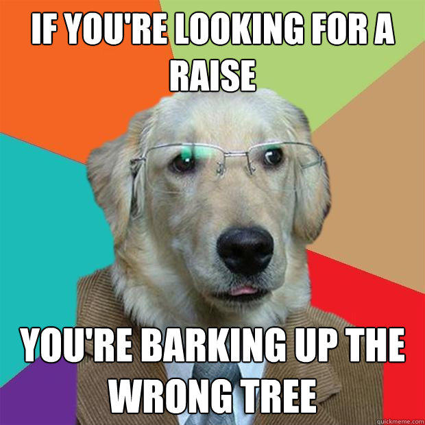 If you're looking for a raise You're barking up the wrong tree - If you're looking for a raise You're barking up the wrong tree  Business Dog