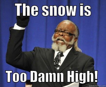 THE SNOW IS         TOO DAMN HIGH!   Too Damn High