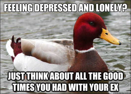 Feeling Depressed and Lonely?  just think about all the good times you had with your Ex - Feeling Depressed and Lonely?  just think about all the good times you had with your Ex  Malicious Advice Mallard