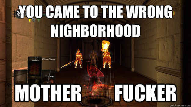 You came to the wrong nighborhood Mother         Fucker  Dark Souls