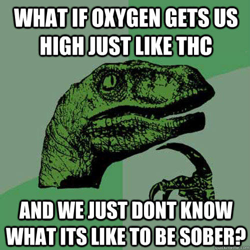 what if oxygen gets us high just like thc and we just dont know what its like to be sober? - what if oxygen gets us high just like thc and we just dont know what its like to be sober?  Philosoraptor