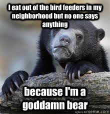 I eat out of the bird feeders in my neighborhood but no one says anything because I'm a goddamn bear - I eat out of the bird feeders in my neighborhood but no one says anything because I'm a goddamn bear  Misc