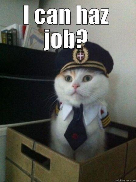 I CAN HAZ JOB?  Captain kitteh