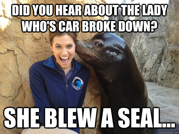 Did you hear about the lady who's car broke down? She blew a seal... - Did you hear about the lady who's car broke down? She blew a seal...  Crazy Secret