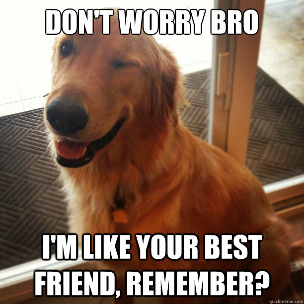 Don't worry bro I'm like your best friend, remember? - Don't worry bro I'm like your best friend, remember?  Misc