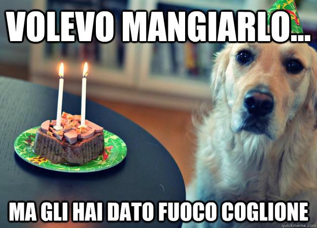 Ma Gli Hai Dato Fuoco Coglione Sad Birthday Dog