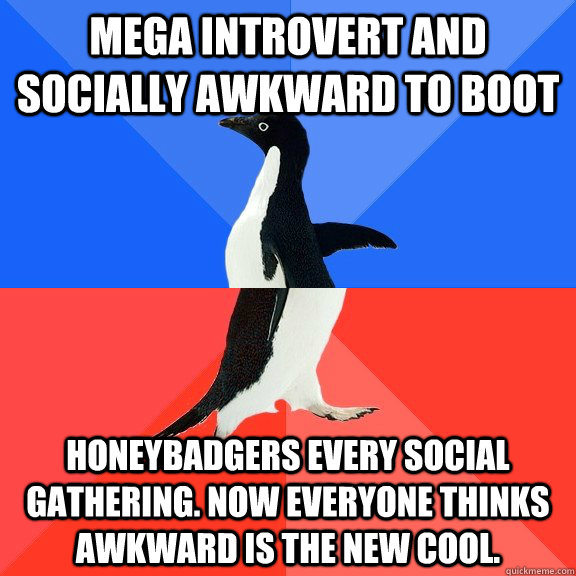 mega introvert and socially awkward to boot honeybadgers every social gathering. now everyone thinks awkward is the new cool. - mega introvert and socially awkward to boot honeybadgers every social gathering. now everyone thinks awkward is the new cool.  Socially Awkward Awesome Penguin