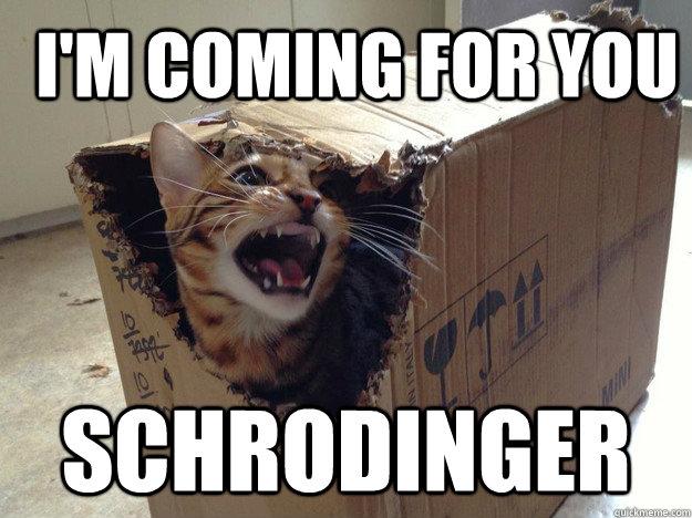 """imagem com um gato furioso saindo de uma caixa e texto dizendo """"Eu estou ido até você Schrodinger"""""""