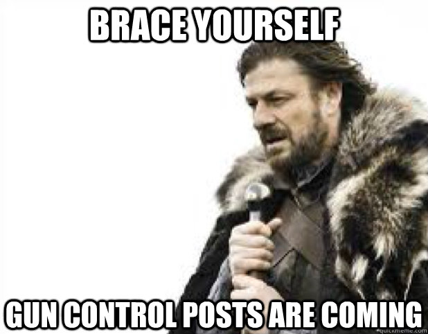 BRACE YOURSELF GUN CONTROL POSTS ARE COMING - BRACE YOURSELF GUN CONTROL POSTS ARE COMING  BRACE YOURSELFS
