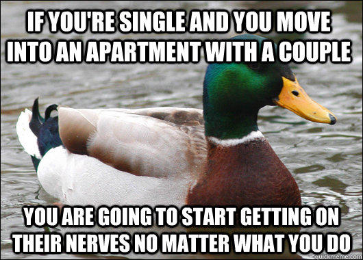 If you're single and you move into an apartment with a couple  you are going to start getting on their nerves no matter what you do - If you're single and you move into an apartment with a couple  you are going to start getting on their nerves no matter what you do  Actual Advice Mallard