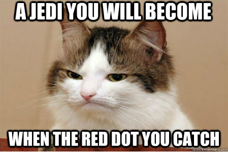 A Jedi you will become when the red dot you catch