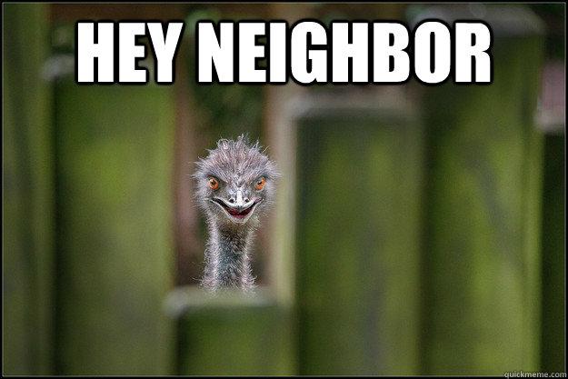 6be475701f0ee2e1266d00b33a4affcced5e12e6163b1d855db0d8a941b958de terrifying ostrich neighbor memes quickmeme,Funny Neighbor Meme