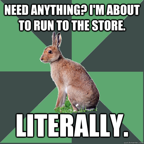 Need anything? I'm about to run to the store. Literally.  Harrier Hare