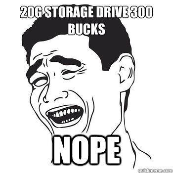 20g storage drive 300 bucks NOPE  NOPE