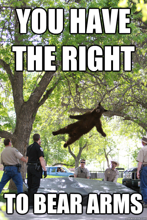 you have the right to bear arms