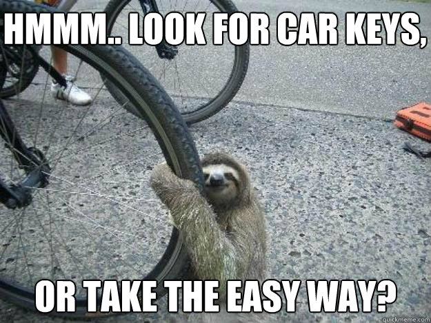 Hmmm.. Look for car keys, Or take the easy way? - Hmmm.. Look for car keys, Or take the easy way?  LuvSloth