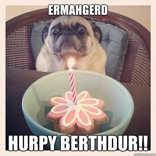 ERMAHGERD HURPY BERTHDuR!!