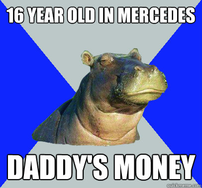 16 year old in mercedes daddy's money  Skeptical Hippo
