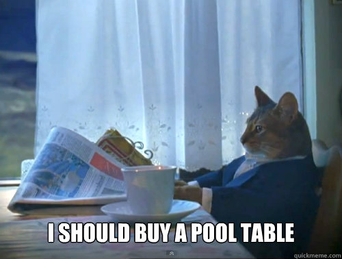 i should buy a pool table -  i should buy a pool table  The One Percent Cat
