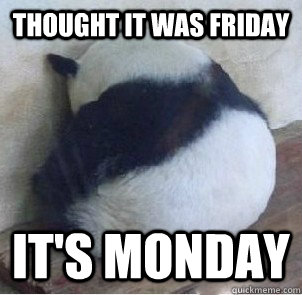 Thought it was Friday it's monday  Depressed Panda