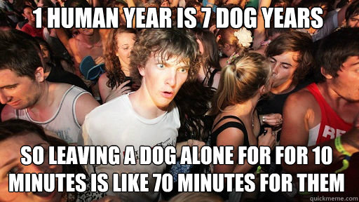 1 human year is 7 dog years  So leaving a dog alone for for 10 minutes is like 70 minutes for them - 1 human year is 7 dog years  So leaving a dog alone for for 10 minutes is like 70 minutes for them  Sudden Clarity Clarence