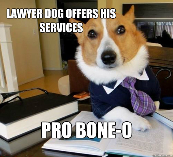 lawyer dog offers his services Pro Bone-o - lawyer dog offers his services Pro Bone-o  Lawyer Dog