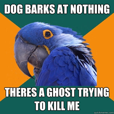 Dog barks at nothing Theres a ghost trying to kill me - Dog barks at nothing Theres a ghost trying to kill me  Paranoid Parrot
