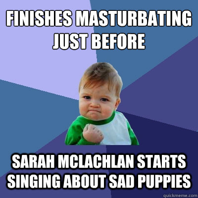 Finishes masturbating just before Sarah McLachlan starts singing about sad puppies - Finishes masturbating just before Sarah McLachlan starts singing about sad puppies  Success Kid