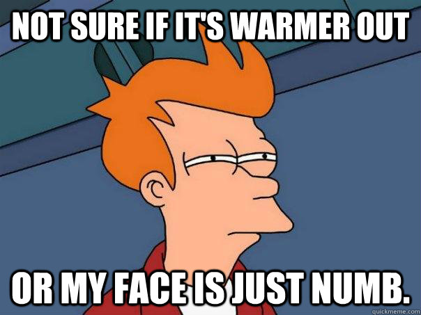 Not sure if it's warmer out Or my face is just numb. - Not sure if it's warmer out Or my face is just numb.  Futurama Fry