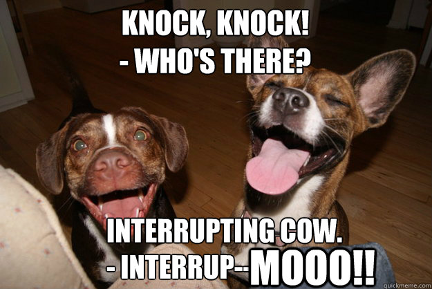 KNOCK, KNOCK! - WHO'S THERE? Interrupting Cow. - Interrup--             MOOO!! - KNOCK, KNOCK! - WHO'S THERE? Interrupting Cow. - Interrup--             MOOO!!  Clean Joke Puppies