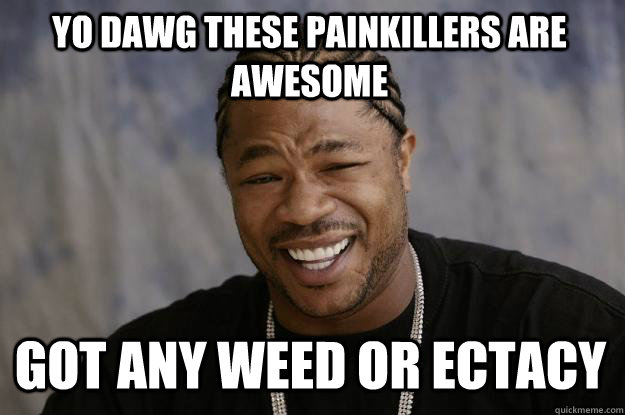 YO DAWG these painkillers are awesome got any weed or ectacy  Xzibit meme