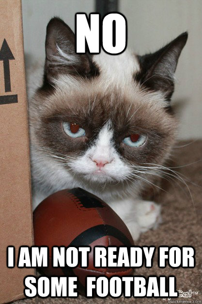 NO I am not ready for some  football - NO I am not ready for some  football  Grumpy Cat Football