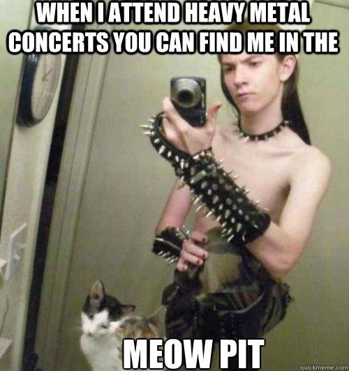 6cec5ab9bf08aa1ac9364c9fa02d53c7f757bc375eb94f71ce752894f92dace1 heavy metal cat lover memes quickmeme,Cat Lover Meme