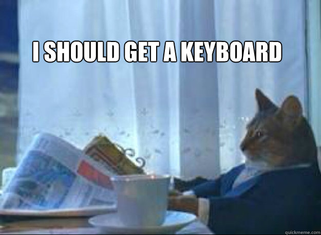 I should get a keyboard    I should buy a boat cat
