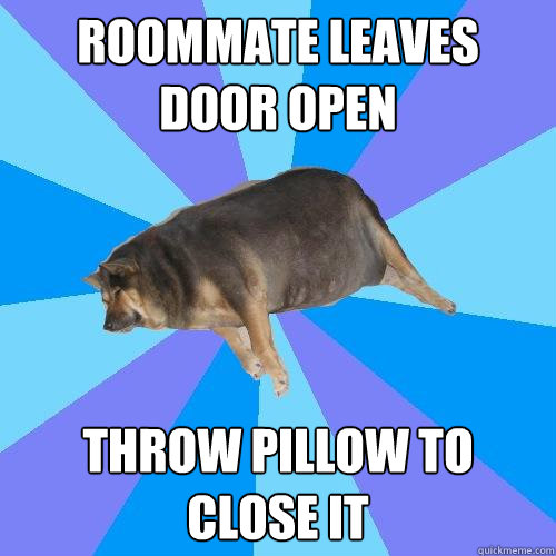 roommate leaves door open throw pillow to close it  Lazy college student