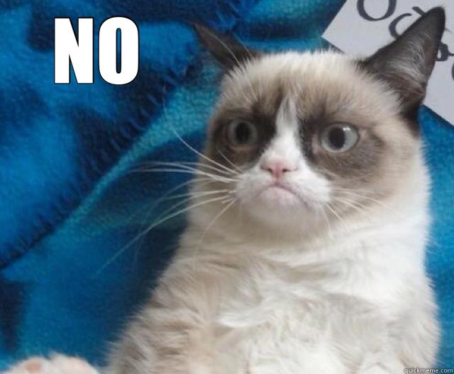 NO                    - NO                     Grumpy Cat No