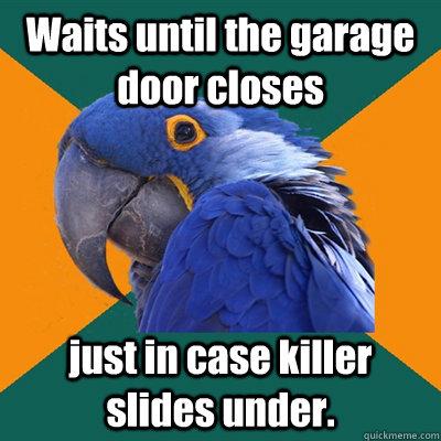 Waits Until The Garage Door Closes Just In Case Slides Under