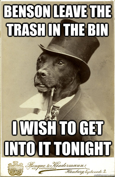 benson leave the trash in the bin i wish to get into it tonight  Old Money Dog