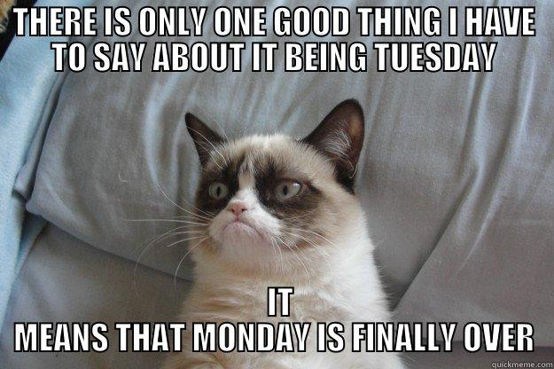 TUESDAY IS NOT MONDAY - THERE IS ONLY ONE GOOD THING I HAVE TO SAY ABOUT IT BEING TUESDAY   IT MEANS THAT MONDAY IS FINALLY OVER Grumpy Cat