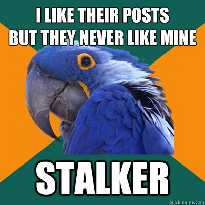 i like their posts but they never like mine stalker - i like their posts but they never like mine stalker  Paranoid Parrot