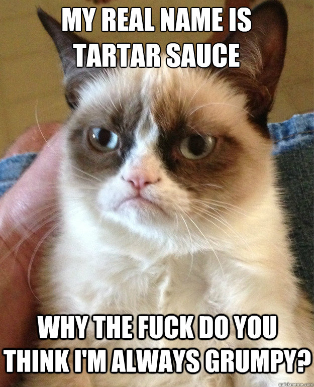 My real name is Tartar Sauce Why the fuck do you think I'm always grumpy? - My real name is Tartar Sauce Why the fuck do you think I'm always grumpy?  Grumpy Cat